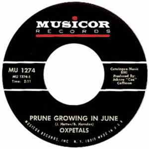 Oxpetals - Prune Growing In June / Walking Down The Sunny Side Album